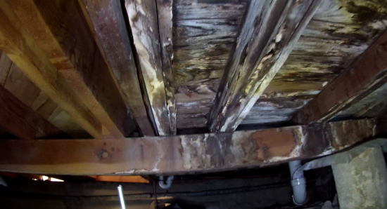 Pier and Beam Home Inspections